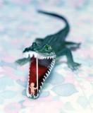 Gator Baby